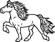 Pferdeaufkleber Aufkleber Pferd Islnder  derpferdeshopde  Im